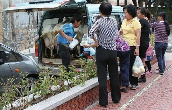 milk_china_1