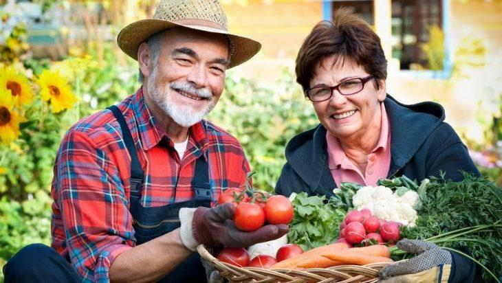 фермеры_пенсии_сельское_хозяйство