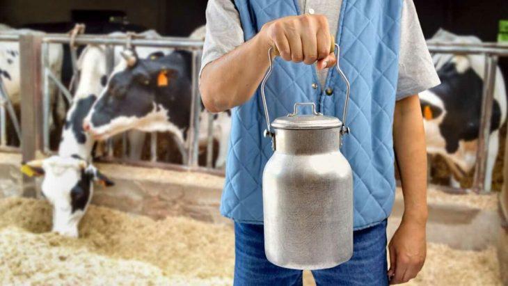 фермеры_татарстан_молоко_деньги