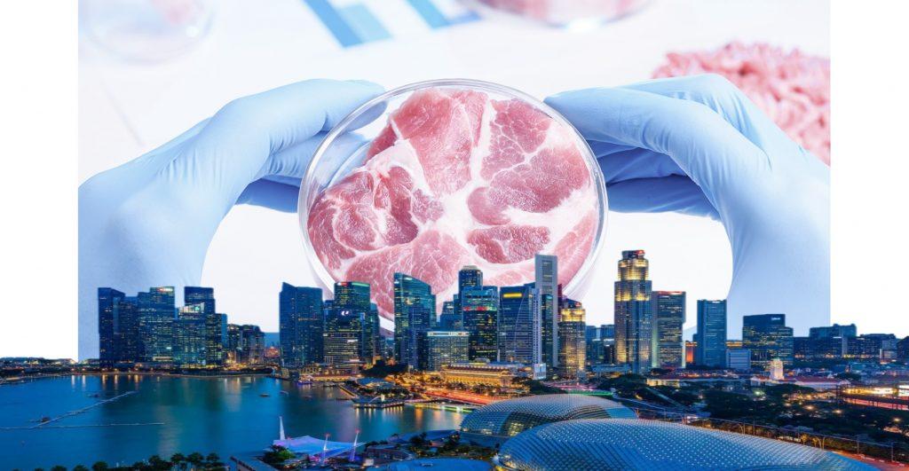 искусственное мясо_сингапур еда