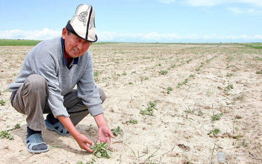 фермеры_киргизия_запреты_товары