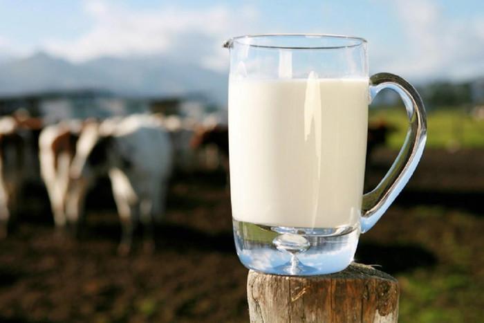 молоко_россия_страны_экспорт