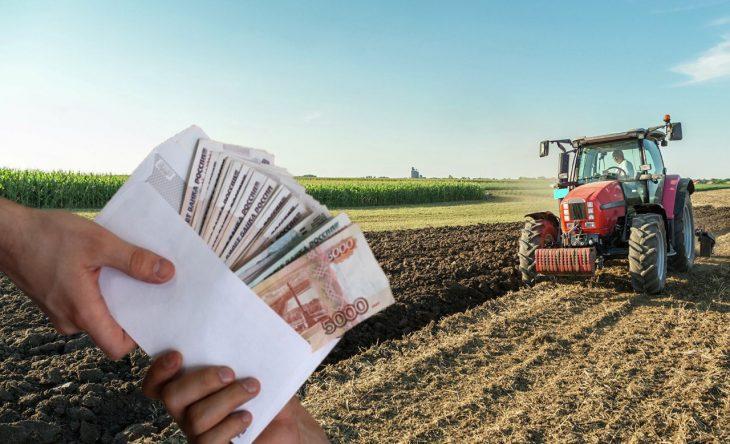 Фермеры_сельское_хозяйство_штрафы_участки