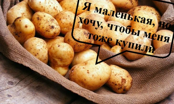 продукты_торговля_общество_ритейл_цены