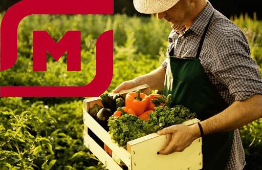 магнит_продукты_фермеры_экономика_предпринимательство