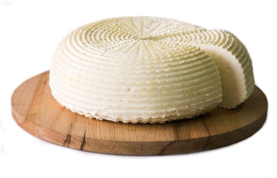 сыр_проверка сыра