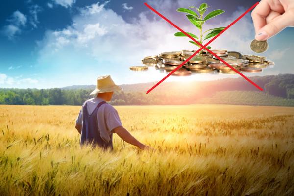 законы_сельское_хозяйство_сад_и_дача_фермеры_правительство