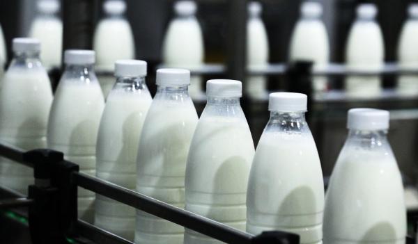 маркировка молока_честный знак