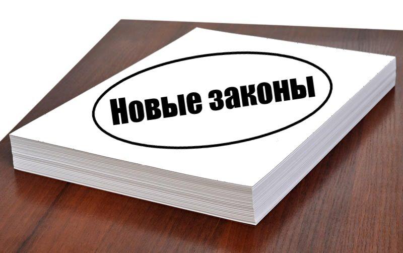 штрафы_общество_законы_политика_россия