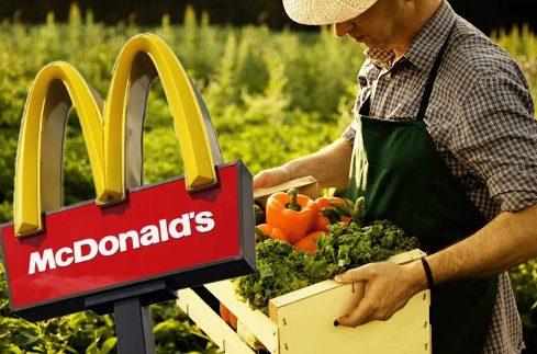 макдоналдс_фермеры_поддержка_бизнес_продукты