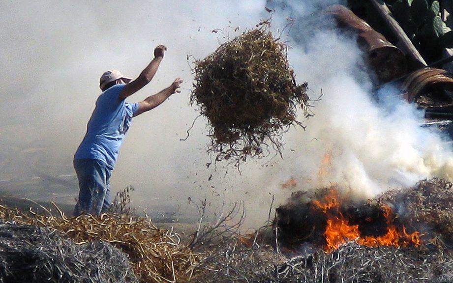 новости_апк_фермерское_хозяйство_аграрии_пожарная_безопасность_господдержка