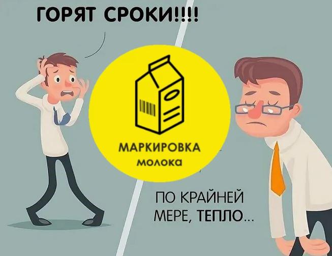 маркировка молочной продукции, фермеры, маркировка продуктов, честный знак, новости маркировка