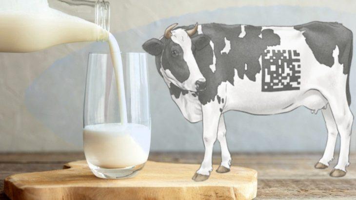 """маркировка, молочная продукция, штраф, бизнес, производители, """"Честный ЗНАК"""", ЦРПТ,"""