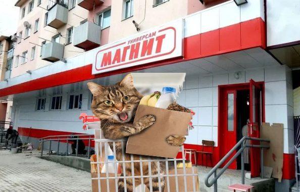 животные_магнит_питомцы_магазин_магнит_зоомир