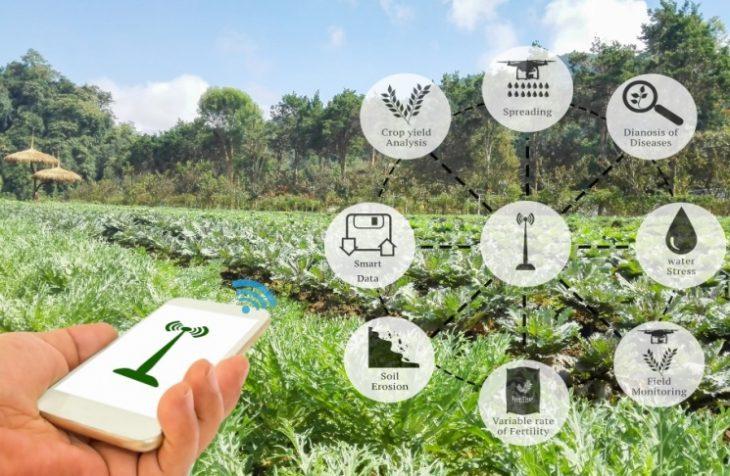 вакансии_трудоустройство_апк_технологии_сельское_хозяйство