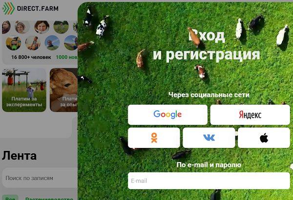 социальные сети, фермеры, директ фарм, апк, аграрии