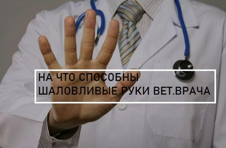 гис меркурий, эвсд, нарушения, фальсификат, вет.врач, россельхознадзор, проверки