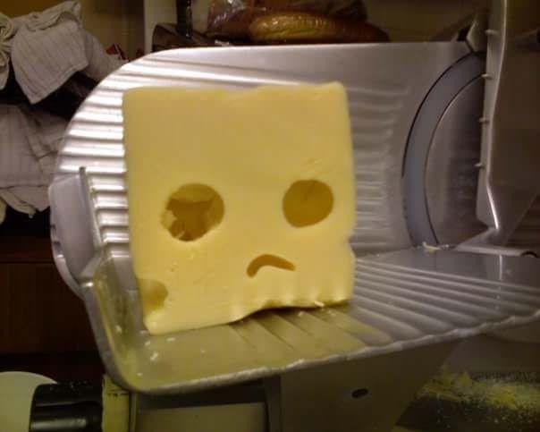 молочные дебаты, новости про сыр, сыр в россии, кризис сыра, новости про продукты, новости молоко