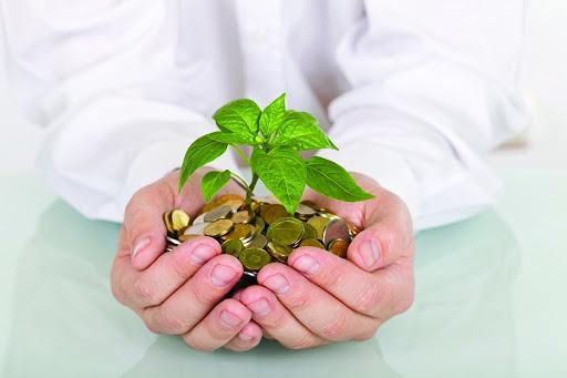 экономика, бухгалтерский учет, финансы, бизнес, правительство, гранты,