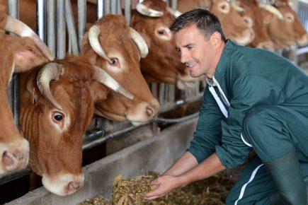 генетика, сельское хозяйство, сельхозживотные, Россельхознадзор, ветеринария,